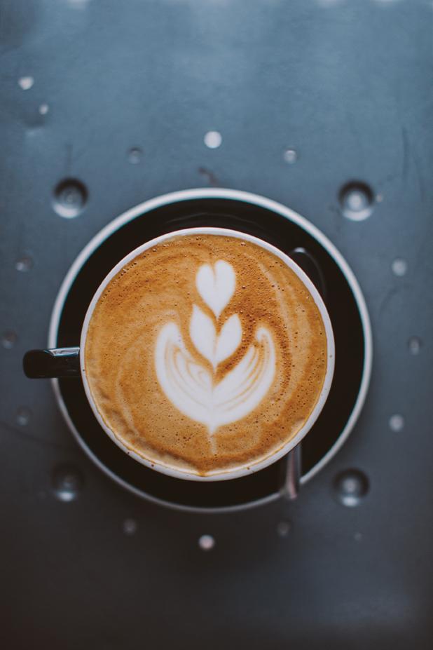 Fuegocoffee Sectionintro