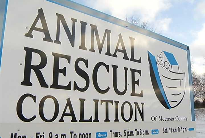 New Animal Shelter In Mecosta County