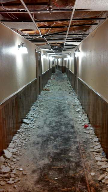 University of Michigan Fraternities Vandalize Two Northern ...