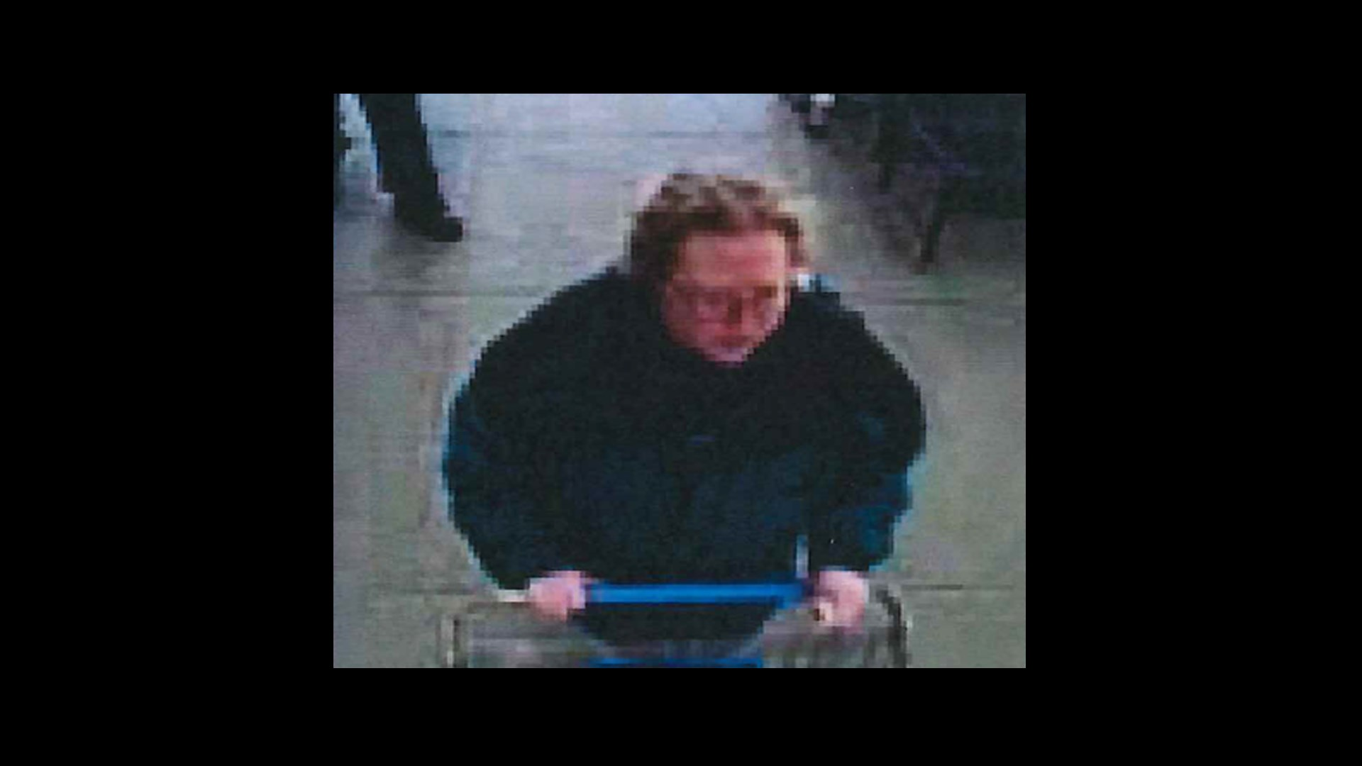Msp Cadillac Post Looking For Woman Accused Of Stealing Purse