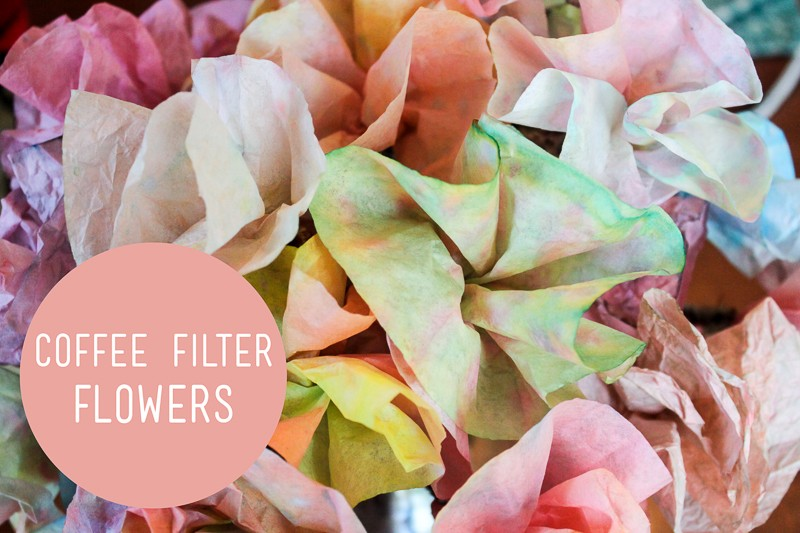 Kids spring break crafts coffee filter flowers 9 10 news kids spring break crafts coffee filter flowers mightylinksfo