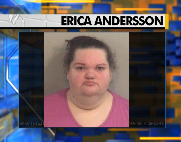 Petoskey Woman Accused of Committing Massive Financial ...