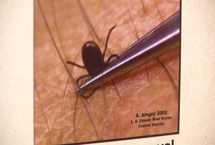 Grand Traverse County Health Department, Tips For Mosquito And Tick