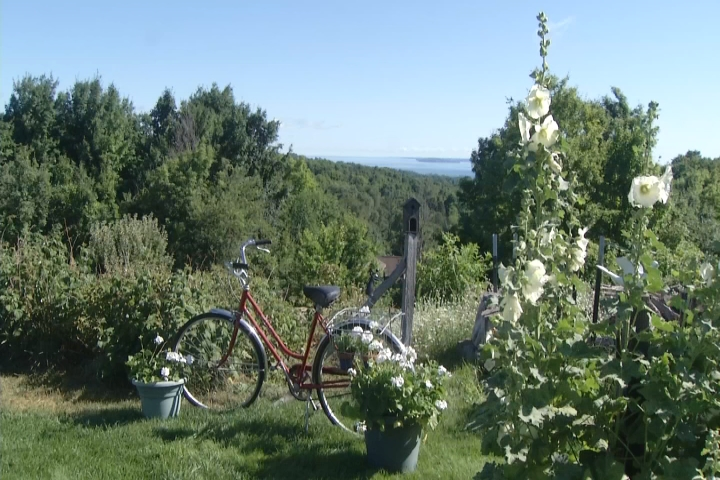 Sights And Sounds: Traverse City Gardens