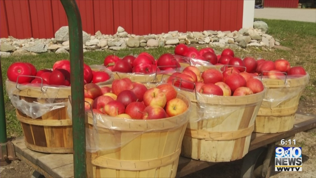 Food Rescue Receives Apple Donation From Antrim County Orchard