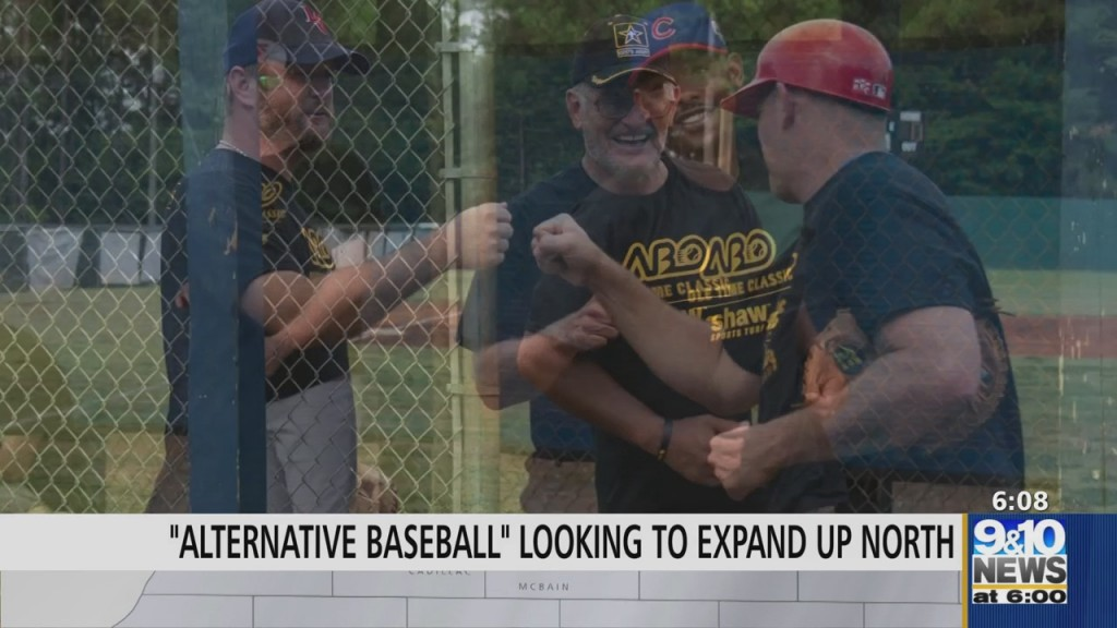 Baseball League For Autistic, Special Needs Adults Looking For Coaches To Start Northern Michigan League