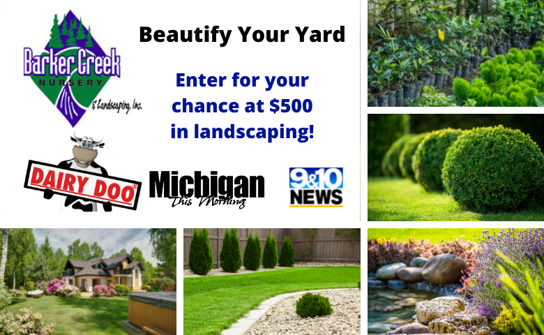 Beautify Your Yard Web Tile 780x480 3
