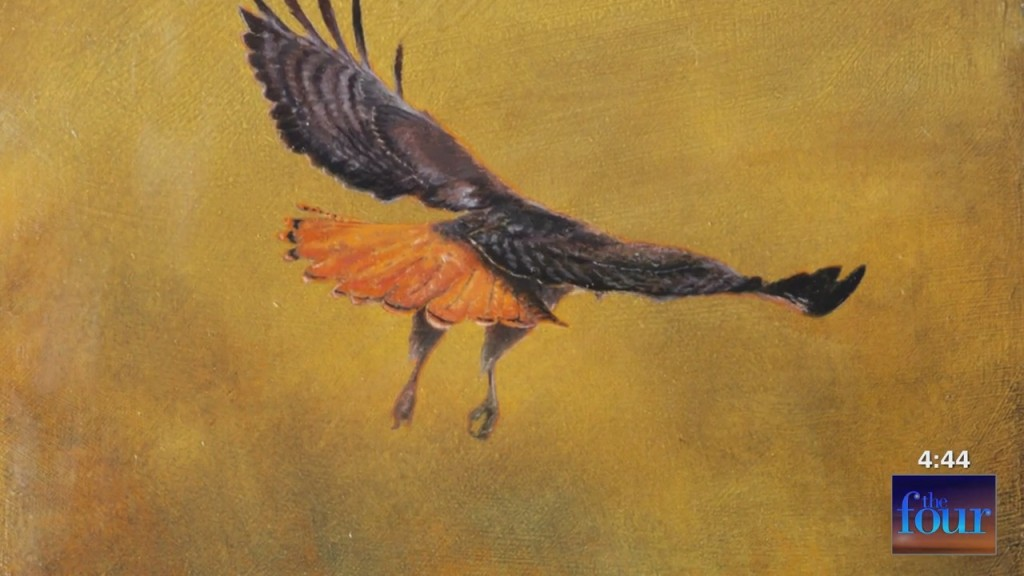 """The Four: Higher Art Gallery's """"wings Of Wonder"""""""