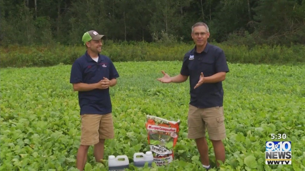 What's Growing With Tom: Checking On The Food Plot