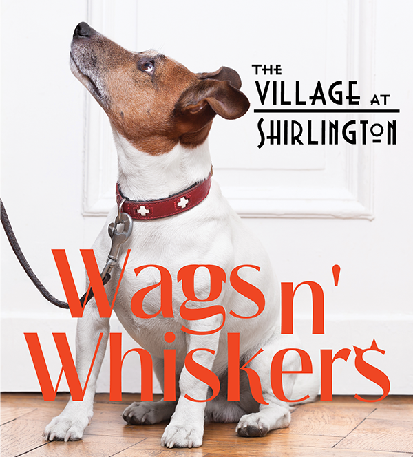 Wags n' Whiskers @ The Village at Shirlington