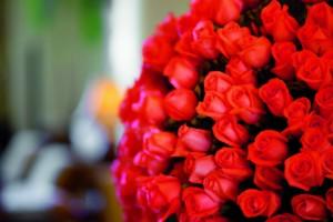 Aphrodisiac Valentine's Day Dinner @ The Ritz-Carlton, Pentagon City