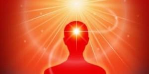 Raja Yoga Foundation Course – 4 Saturdays (VA) @ Meditation Museum II