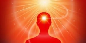 Raja Yoga Foundation Course – 4 Saturdays (VA) @ Meditation Museum |  |  |