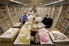 National Herbarium Speaker @ Little Falls Presbyterian Church