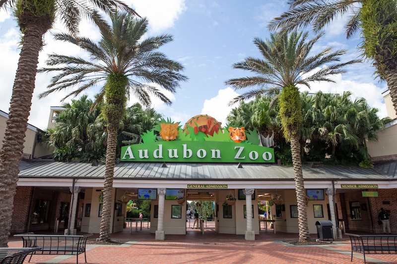 Audubon Zoo New Orleans, Louisiana September 17, 2019