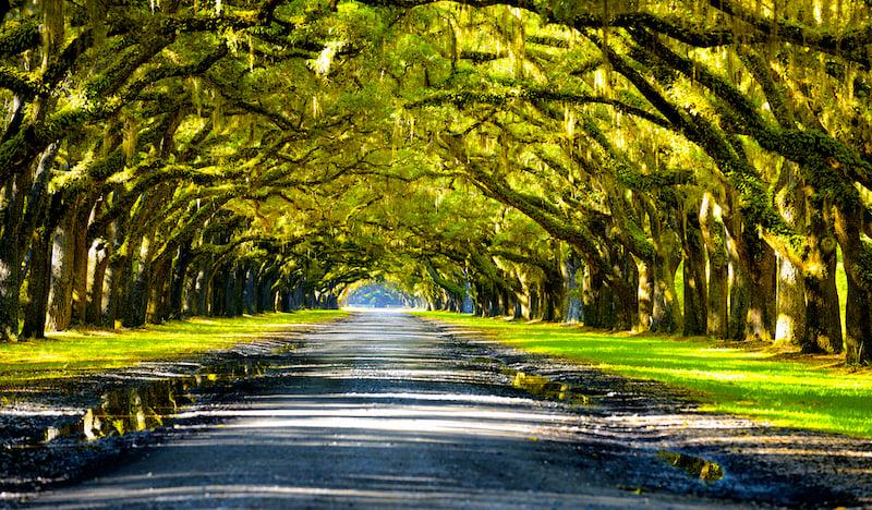 Oak Road
