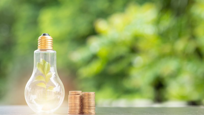 Energy Saving. Tree In Light Bulb And Stacks Of Coins On Nature Background. Saving, Natural Energy And Financial Concept.