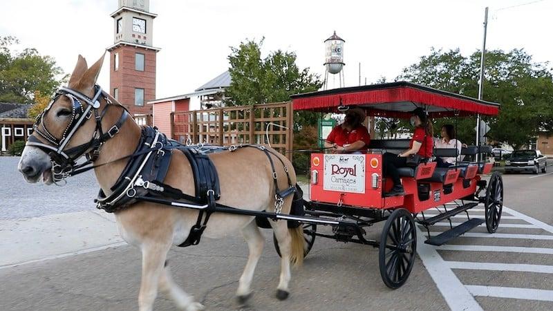 Royal Carriages Covington 1