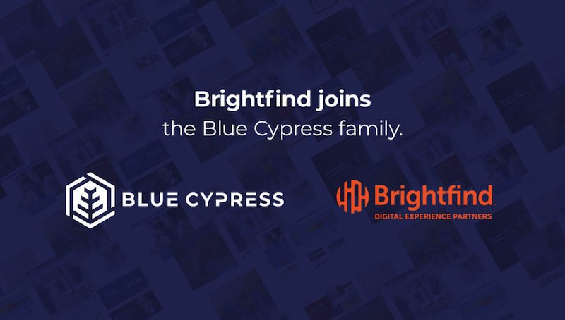 Bluecypress Brightfind 900x500 1 980x599