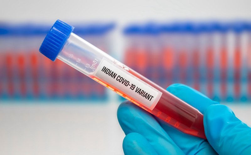 A Medical Worker Holding A Centrifuge Tubes With Graduated Marks With A Covid 19 Indian Variant Virus Sample. Concept: Lineage B.1.617, Double Mutation