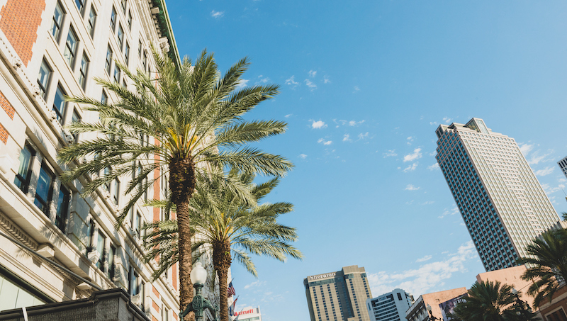 New Orleans Cityscape With Canal Street Buildings And Palm Trees