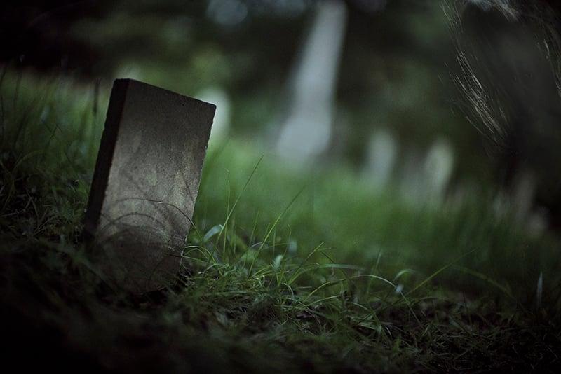 Shinnville Grave