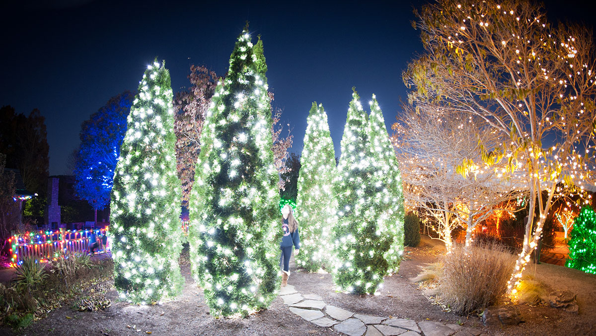 Christmas Lights In Charlotte 2021 Must See Holiday Light Shows Across North Carolina 2020 Charlotte Magazine