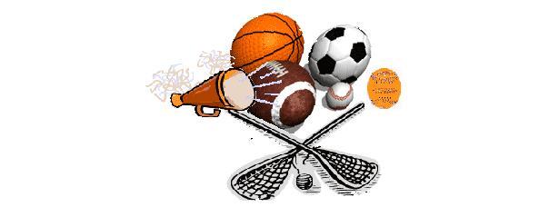 Wesley Chapel Weddington Athletic Association