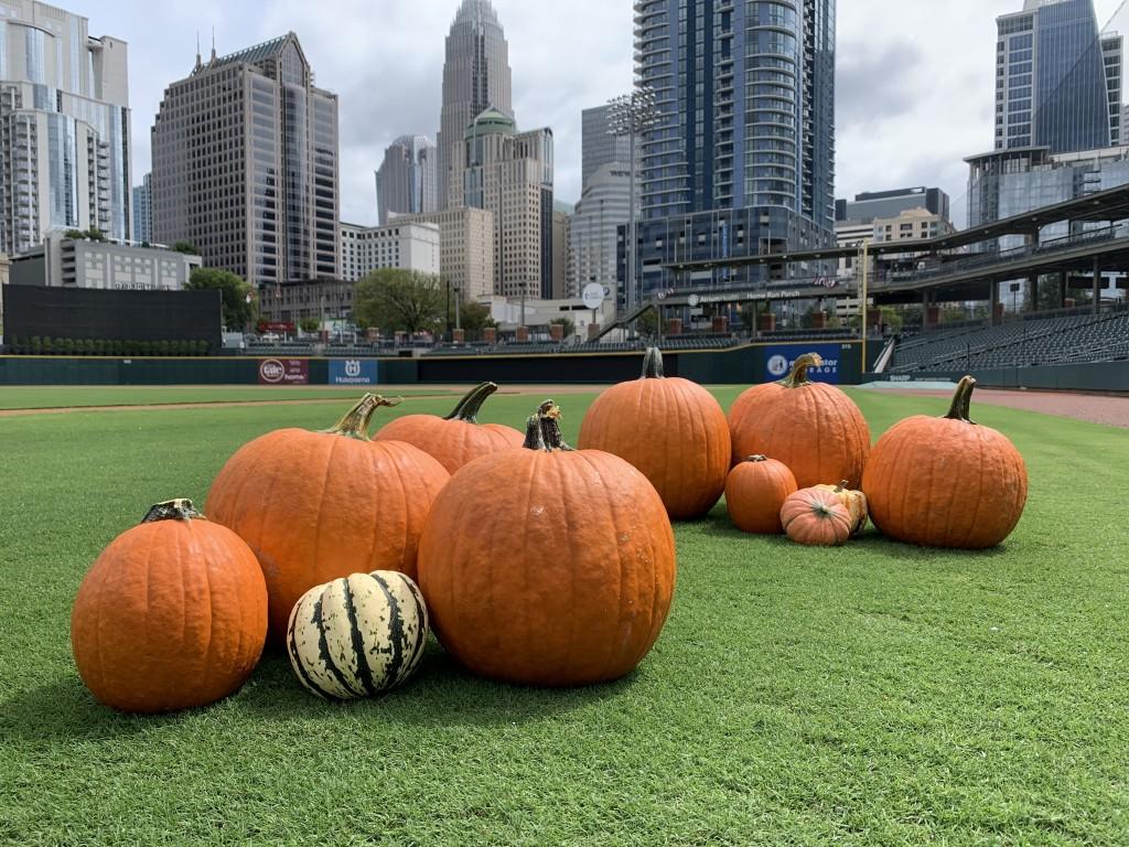 Pumpkins At Truist Field 1