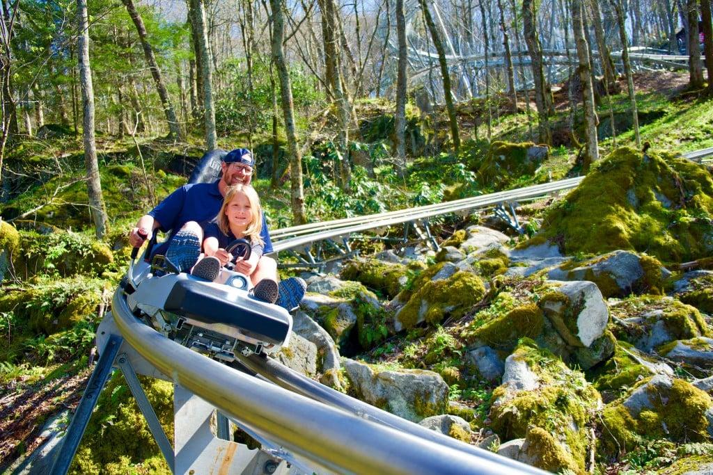 Courtesy Of Banner Elk Wilderness Run Alpine Coaster