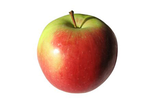 Applesnacks 315