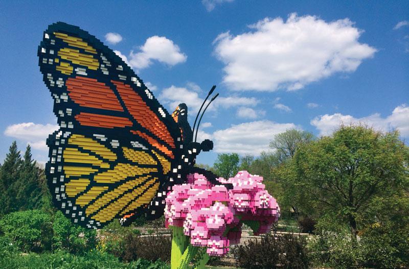 Excursion Butterfly Lego Exhibit Credit Nc Arboretum