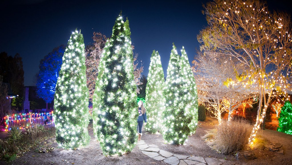 Must See Holiday Light Shows Across North Carolina Charlotte Parent