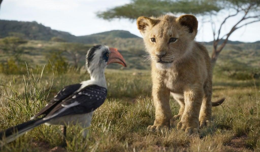 Lionkingphoto2