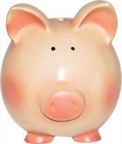 Piggybankweb 315