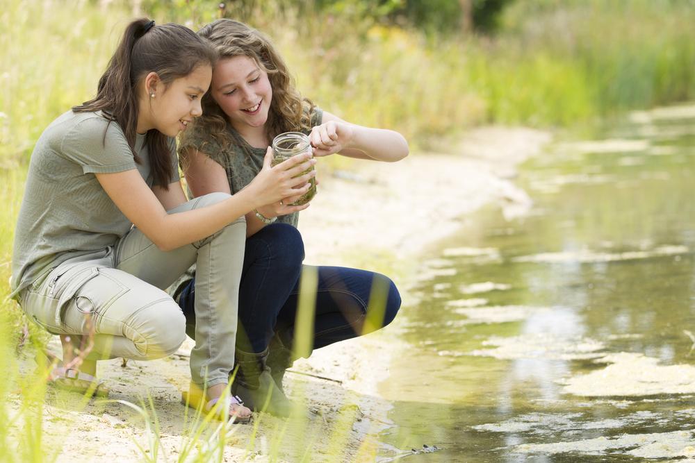 Shutterstock 212447488