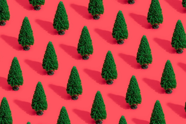 Pursellmanufacturingisthebiggestnameinchristmastrees