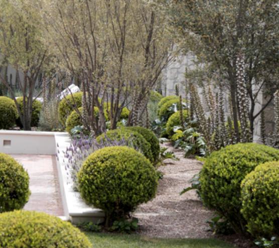 Sozo Landscape Design