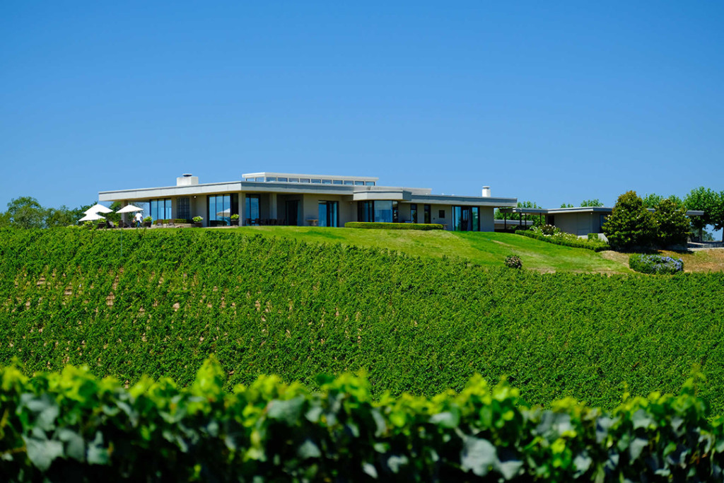 A set back image of the Russian River Estate Vineyard in Sebastopol, California