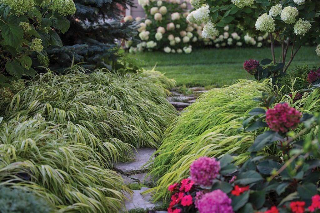 Grass Matters