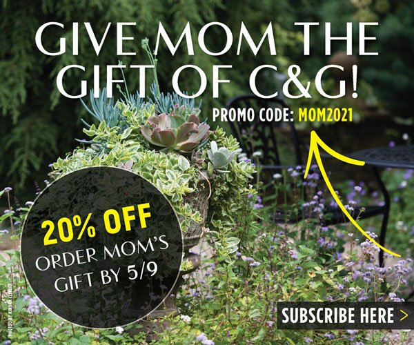 Give Mom the Gift of C&G