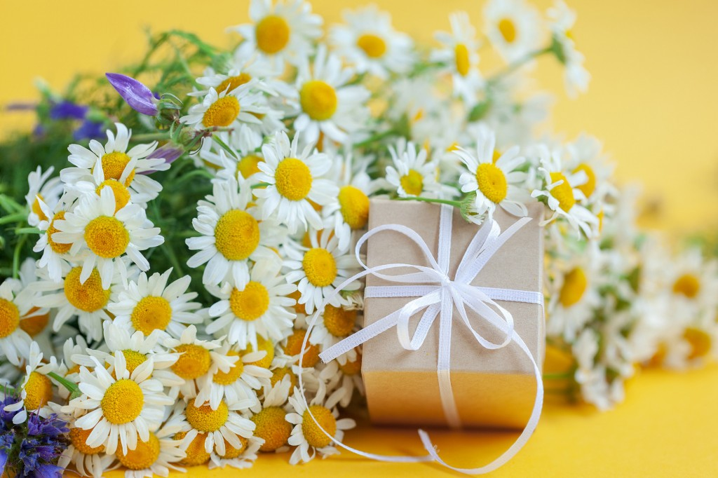 Chamomile Flowers And Gift Or Present Box On Yellow Background. Holiday Celebration Concept.