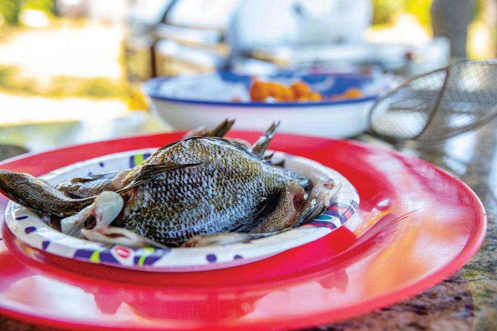 024 050821 Cooking Bream Fish Ccsz 2048x1366