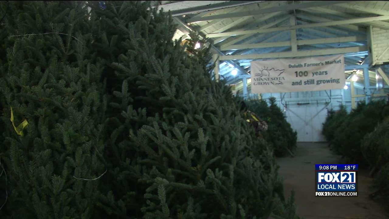 Christmas Trees Take Over Duluth Farmers' Market