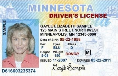 mn drivers license