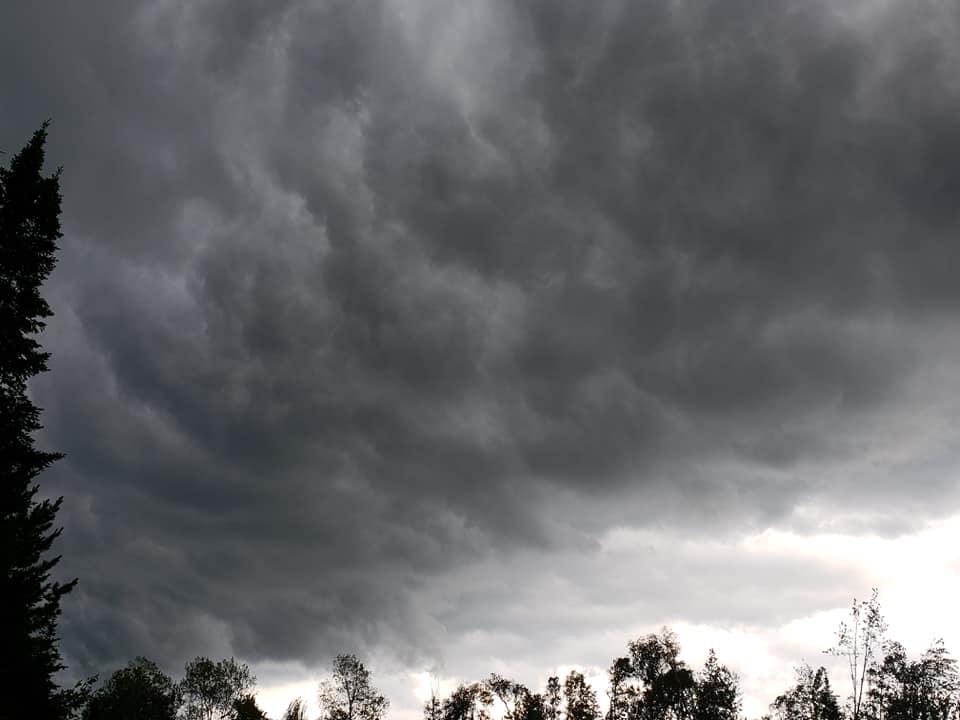 Severe Storms Produce A Tornado & Knock Down Trees - Fox21Online