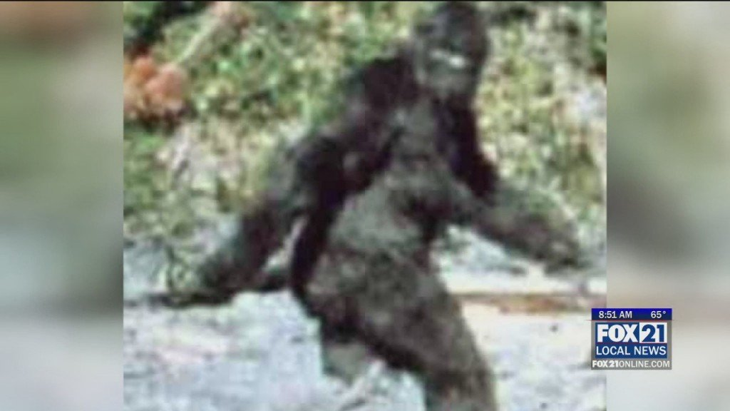 Bigfoot Conference
