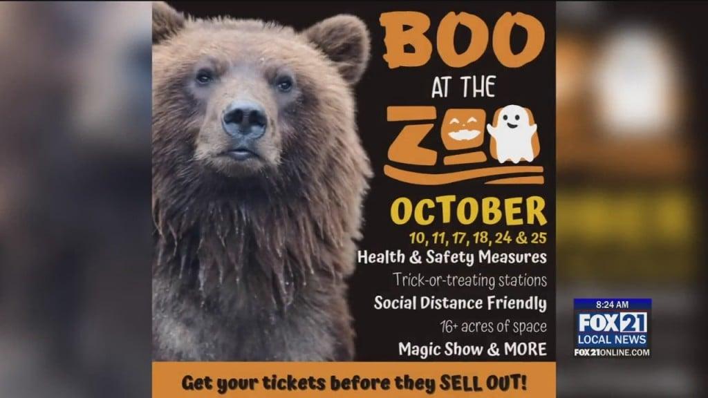Boo At Zoo