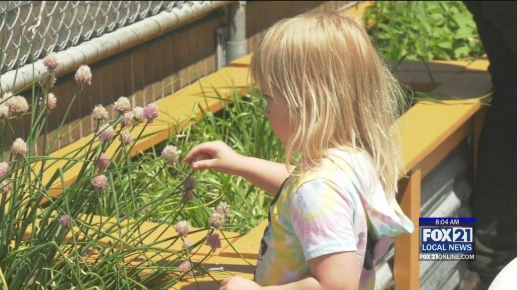 Garden Blessing