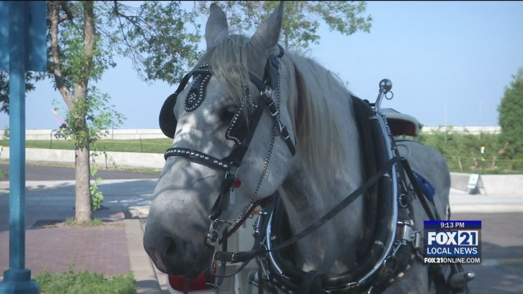 Top Hat Carriage Rides